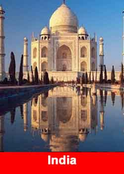 India MLM