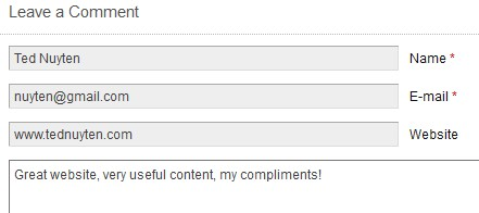 How to use the comment Box Leaving Comments On Blogs Is Gold For Your Own Website