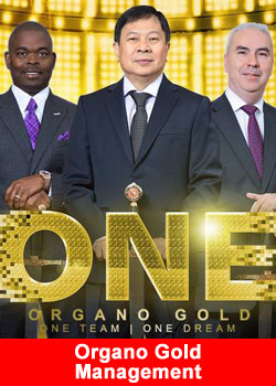 Organo Gold Management Team