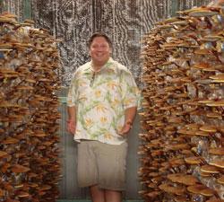 Robert Hollis Mushrooms