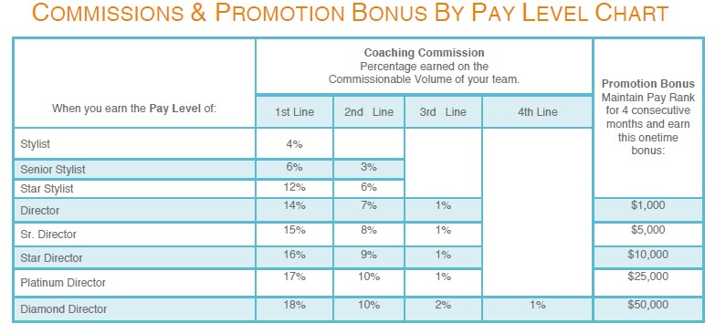 Stella and Dot Pay Level Chart